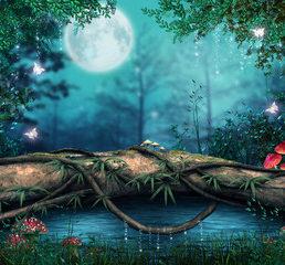 fairy-forest-2-free-fotolia
